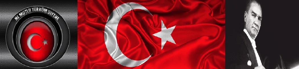 Mehmet Savaş Yiğitoğlu Kişisel Bloğu