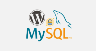 phpMyAdmin Üzerinden WordPress Şifresi Nasıl Değiştirilir?